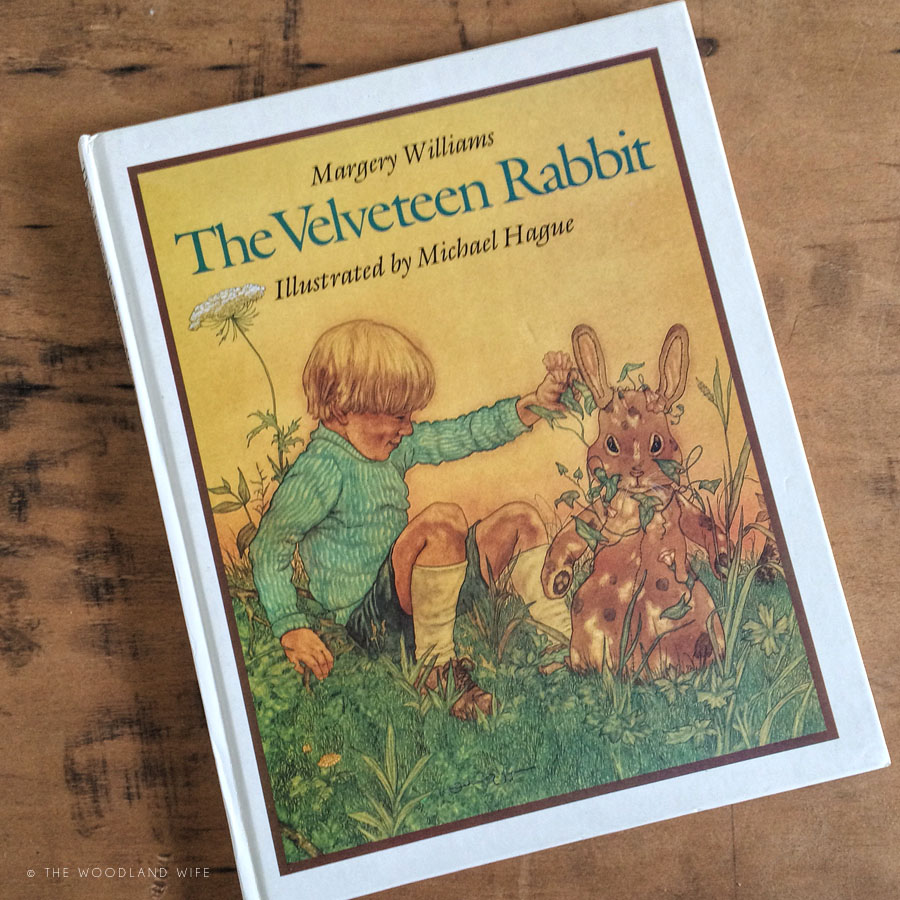 World Book Day 2016 - The Velveteen Rabbit