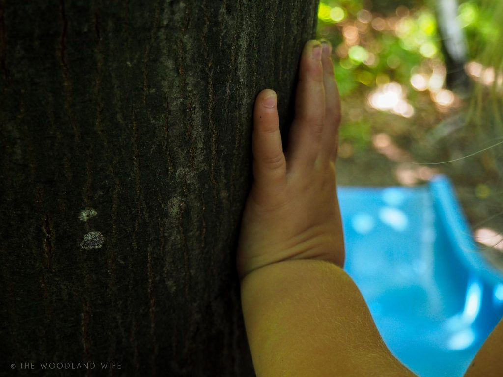 The Woodland Wife - 10 Reasons to be Mindful