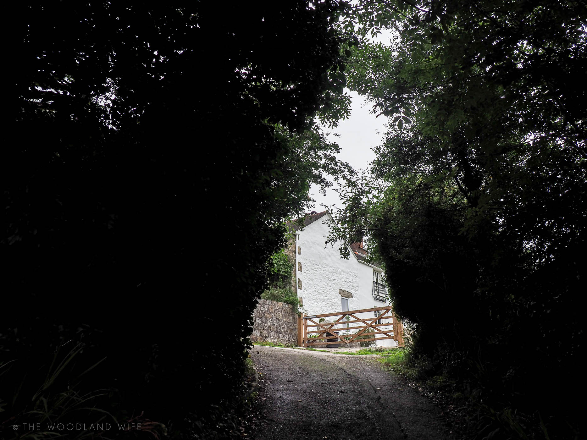 The Woodland Wife - South Coast of Cornwall