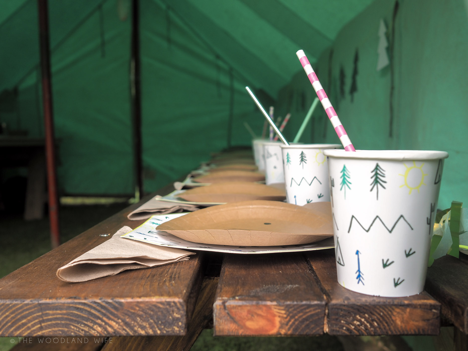 The Woodland Wife - Woodland Explorer Birthday Party