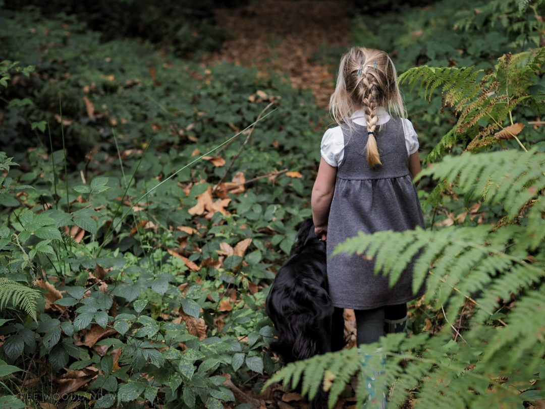 The Woodland Wife - After School Walk in the woods