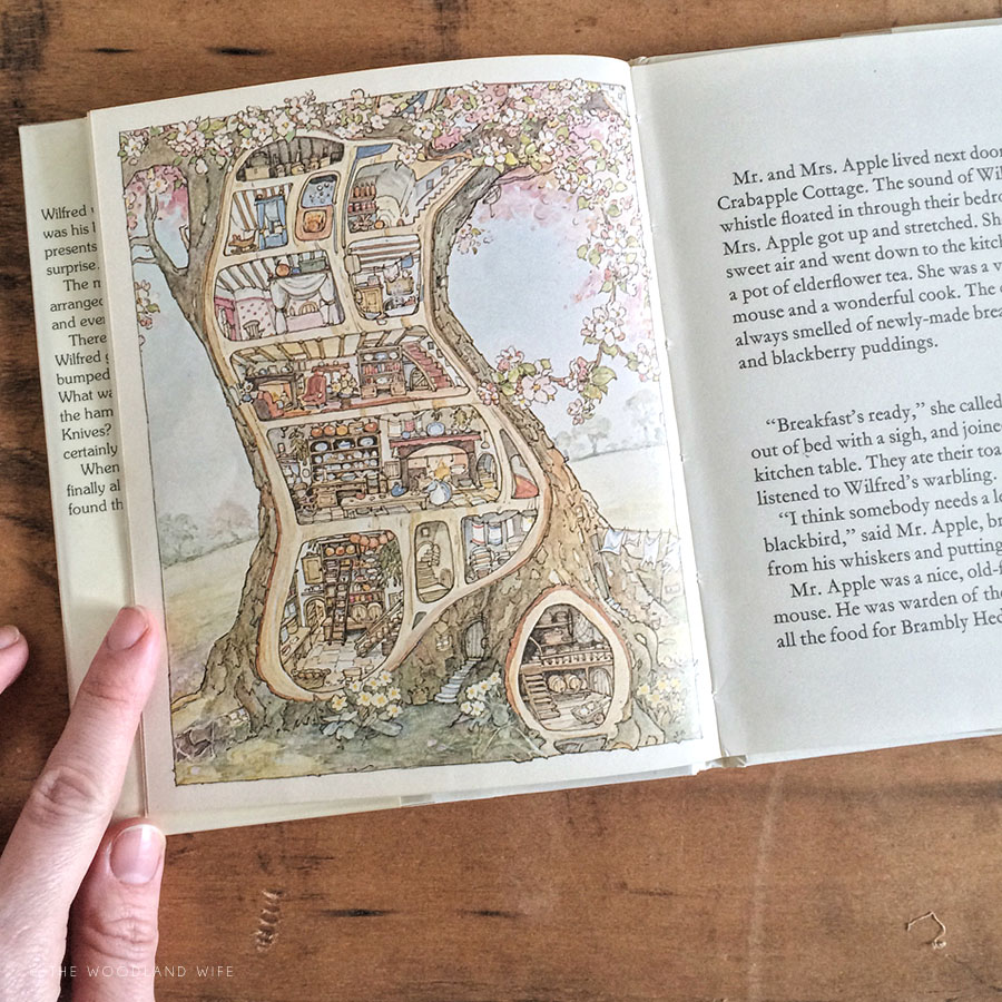 World Book Day 2016 - Brambly Hedge