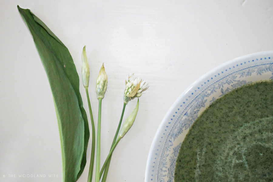 The Woodland Wife - Wild Garlic and Nettle Soup Recipe