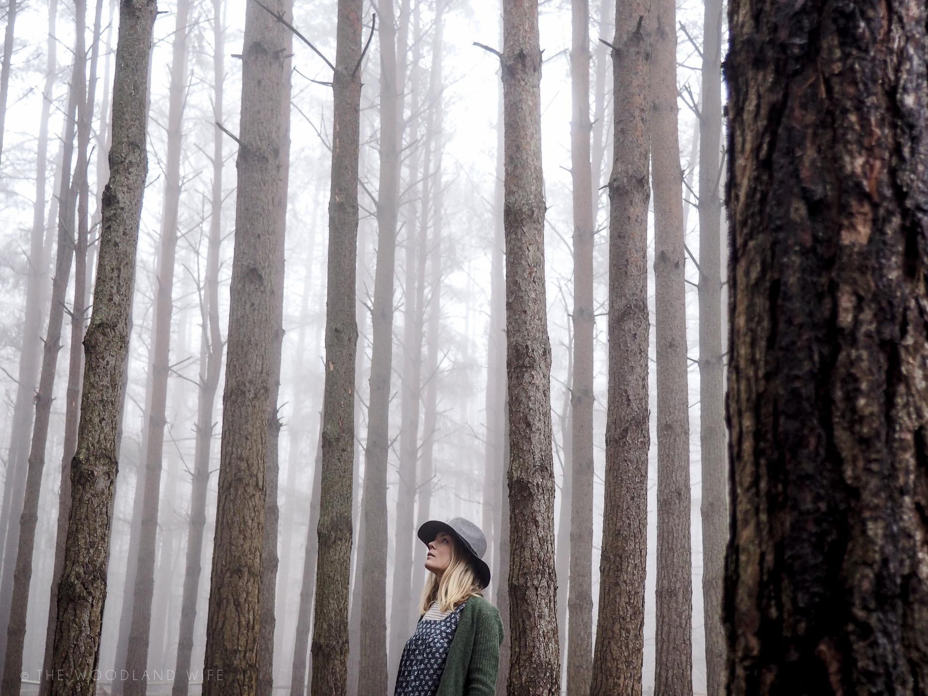 The Woodland Wife - Laura Ashley Homespun SS17