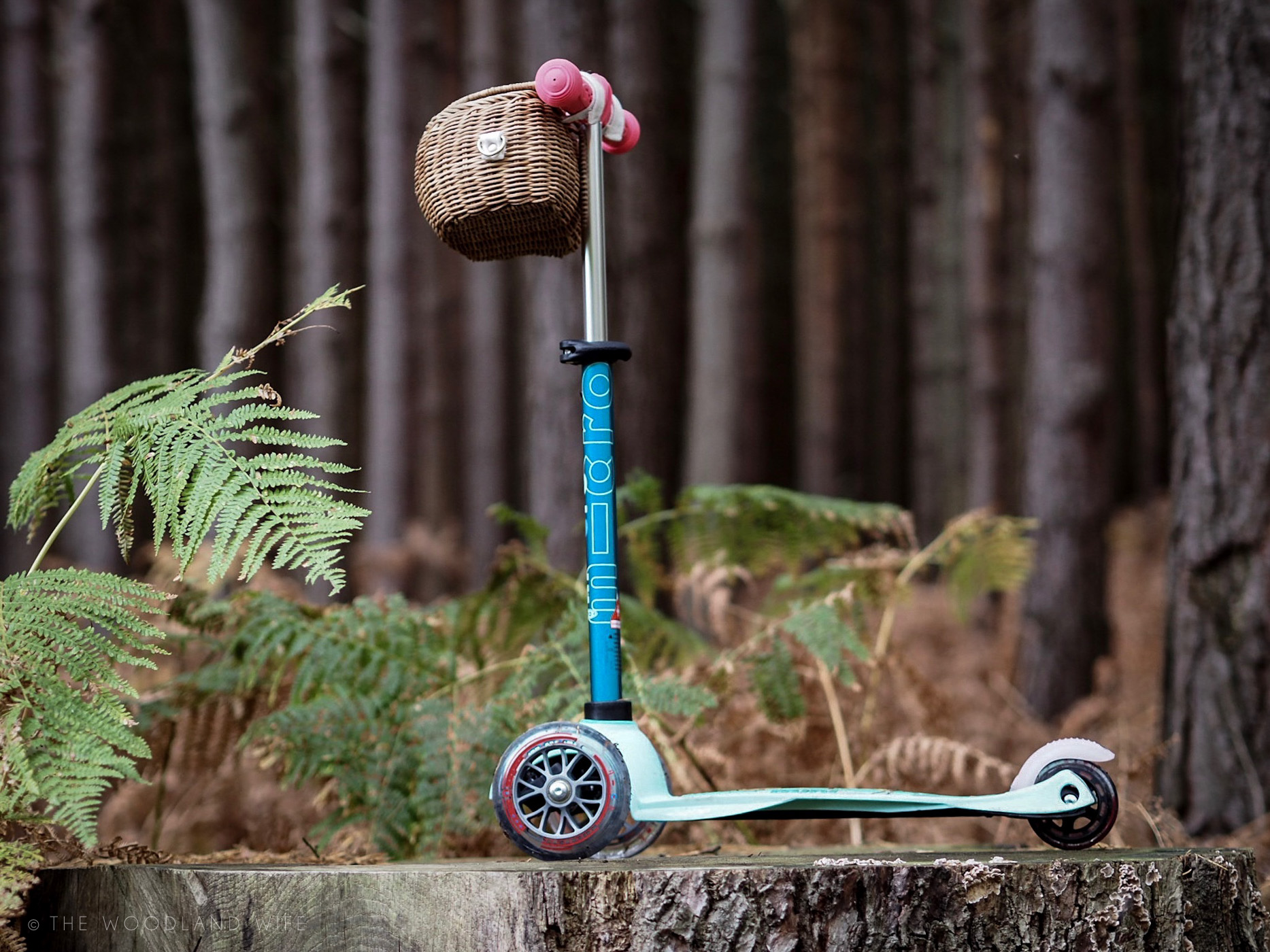 The Woodland Wife - Made for Adventure - Mini Micro Scooter - Customised Scooter
