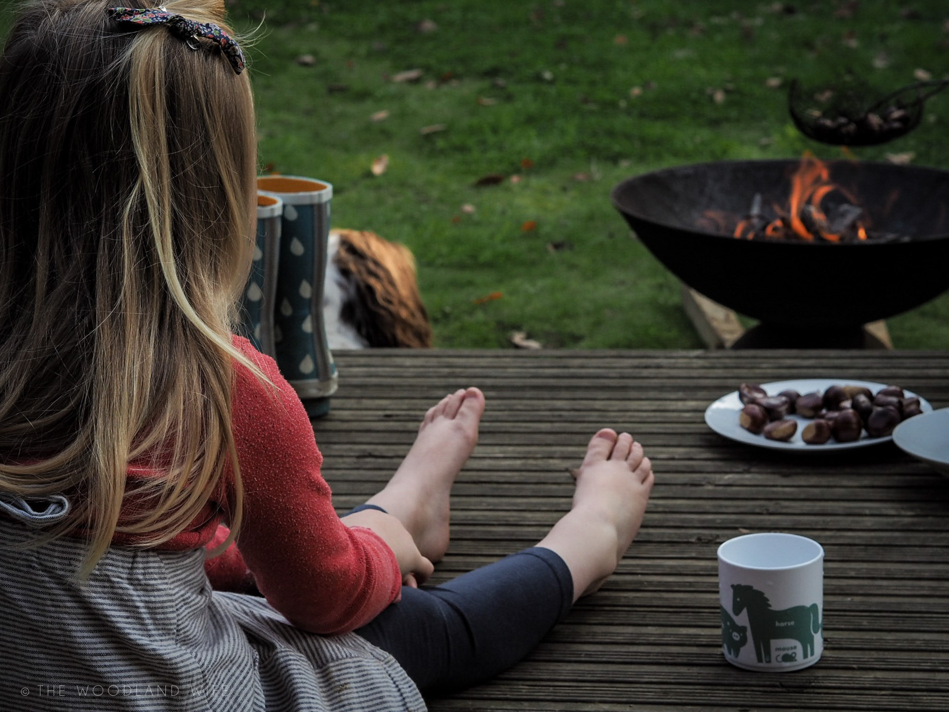 The Woodland Wife - Roasting Chestnuts in the woods - The taste of Autumn - Gather, Roast, Feast on sweet chestnuts